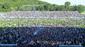 Fcc fans auf dem rasen ernst abbe sportfeld