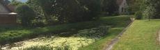 Harbke schlosspark